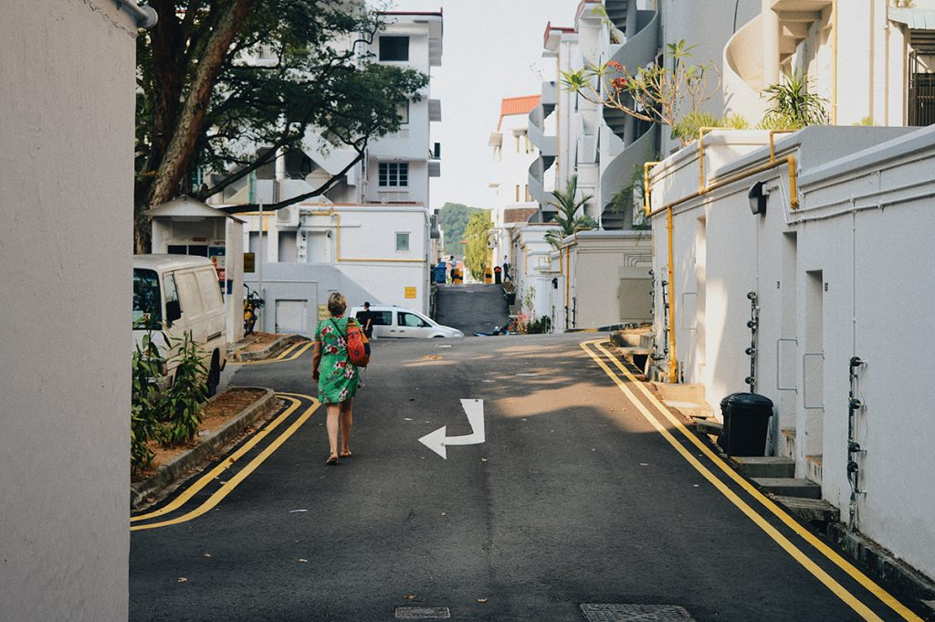 The Aesthetic Alleyways of Tiong Bahru
